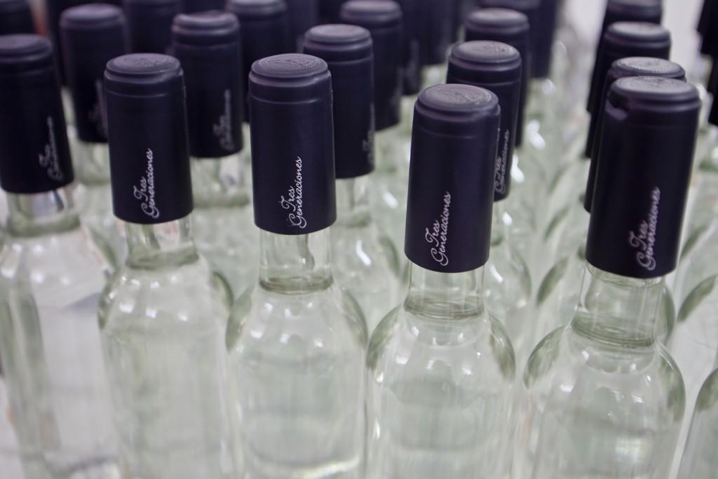 Botellas de Pisco