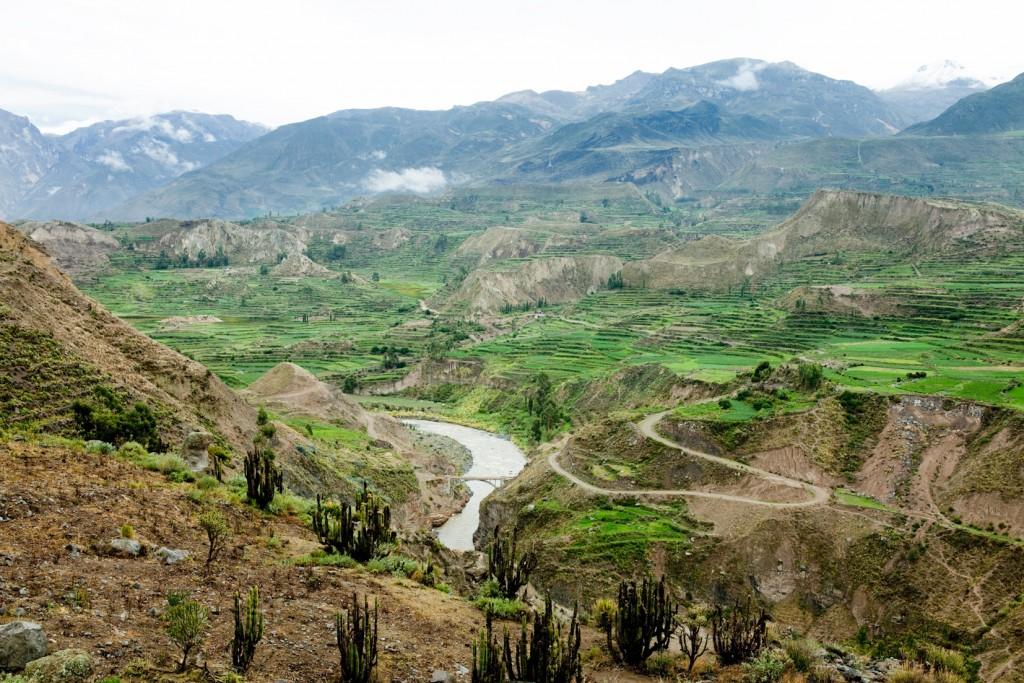 Viaje al Cañon del Colca