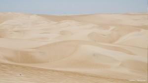 Dunas Desierto Ica - Tour Sandboard Ica